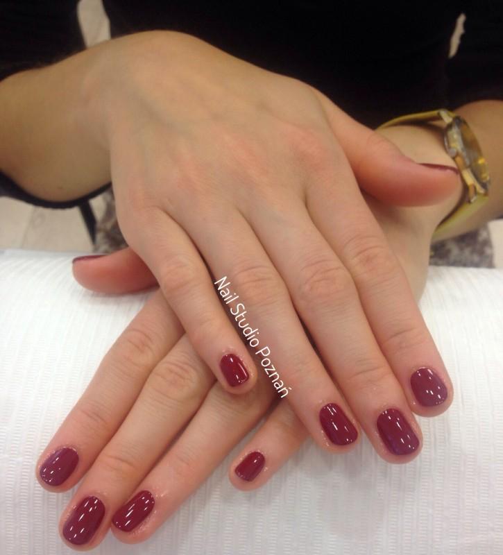 Manicure 41